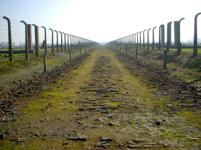 the wire fences at Auschwitz-Birkenau