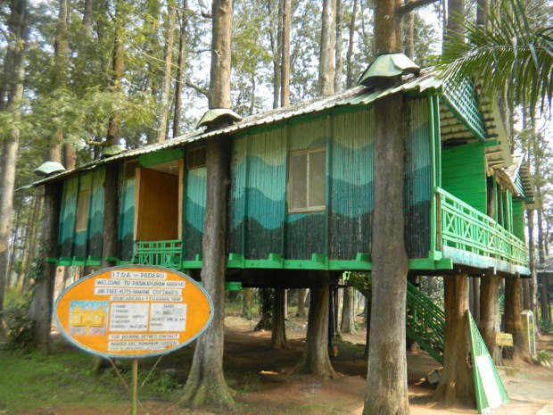 tree house hotel in India